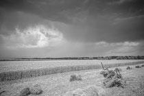 2ème prix photo noir et blanc Auteur David Baudy