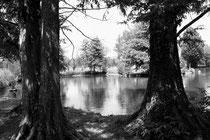 3 ème prix photo noir et blanc Auteur Annie Guironnet