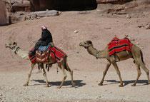 Die Strassen der Handelmetropole Petra waren ursprünglich wohl erfüllt von einem stetigen Kommen und Gehen von Menschen und Tieren (Kamele, Esel, Pferde), vorbei am geschäftigen Treiben der Marktstände, wo Kostbarkeiten aus aller Welt feilgeboten wurden.