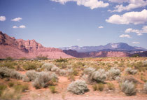 Blick aus dem fahrenden Auto (deshalb die Unschärfe) auf die spektakuläre Landschaft im Südwesen der USA mit den Sträuchern und Büschen der kalten Wüste, roten, kliffartigen Gebirgszügen und dem tiefblauen Himmel mit den kleinen, weissen Wolken (Bild 1966