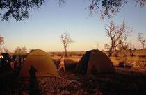 Unser Camp im Moremi Game Reserve. Die Zelte stellten wir immer selbst auf, sammelten Holz, halfen bei den Küchenvorbereitungen und dann auch beim Abwaschen. Am Morgen stellten wir fest, dass wir unser Zelt l auf einen Flusspferdwechsel gestellt hatten.