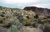 """Unser Weg Richtung Yellowstone Park führte uns, vorbei an einer alten, verlassenen Silbermine, mit attraktiver Wüstenvegetation (""""kalte Wüste""""), vorerst nach Idaho."""
