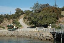 """Eine Attraktion von Victor Harbor ist die pferdegezoge Strassenbahn, mit der man über einen mehrere hundert Meter langen Steg zur vorgelagerten Insel """"Granite Island"""" kommt. (der Steg ist allerdings auch zu Fuss begehbar."""
