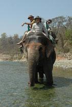 Der etwa 1 ½ Std. dauernde Ausritt führte entlang der Strasse durch ein Waldstück zum Fluss Kosi, wo der Elefant trinken konnte. Der Führer stieg dort ab, liess uns alleine (!) auf unserem riesigen Reittier zurück und machte ein paar Fotosouvenirs.