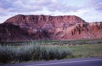 """Durch die seit ca. 20 Millionen Jahren anhaltende Hebung des Colorado Plateau und die daraus resultierende Erosion wurden die aufgestellten Gesteinsschichten freigelegt und so ist diese """"Hautfalte der Erde"""" (""""wrinkle on the earh"""" entstanden."""