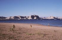 Der 658 km2 grosse Lake Powell, ein Stausee und Naherholungsgebiet liegt rund 350 km NO von Las Vegas. Er wurde vom Glen Canyon Dam bis 1980 aufgestaut und grenzt im Nordosten an den Canyonlands- sowie im Süden an den Grand-Canyon-Nationalpark.