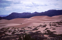 Der 1963 gegründete Coral Pink Sand Dunes State Park liegt im Süden Utahs.. Durch die topographische Lage wird die Windgeschwindigkeit vorerst so erhöht, dass der Wind erodierten Navajo-Sandstein mitreisst, dann verlangsamt und ihn im State Park ablagert.
