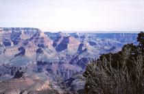 Unvergesslich ist mir die Kälte am Grand Canyon im Januar 1964. Wir übernachteten zu viert mit Schlafsäcken im Auto nahe des Canyons bei Temperaturen weit unter null Grad. Das schönste war das Kaminfeuer in der Grand Canyon Lodge am nächsten Morgen…