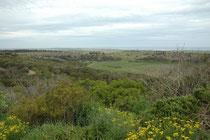 Tower Hill Reserve 15 km westlich von Warrnambool ist ein riesiger, erloschener Krater, der vor ca. 30'000 Jahren entstanden ist. Im Jahre 1961 wurde das Gebiet zu einem staatlichen Wild-Reservat. Seither hat man rund 300'000 Bäume und Sträucher gepflanzt
