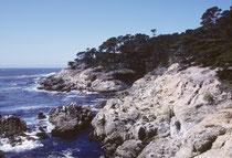 Hier sind wir auf dem 17 Miles Drive, der, vorbei an spektakulären landschaftlichen Schönheiten um die Landzunge von Monterey über Carmel-by-the-Sea, vorbei an Pebble Beach, durch Pacific Grove wieder nach Monterey zurückführt.