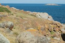 Granite Island hat eine Grösse von nur 25 ha und wird von mehr als 700 000 Besuchern jährlich besucht (Hauptattraktion sind heute die mehr als 2000 Zwergpinguine, die auf der Insel leben und brüten und die man am Abend in geführten Touren bobachten kann.