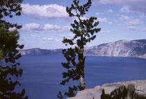 1902 wurde der 741 km2 grosse Crater Lake National Park – der einzige NP Oregons - gegründet. Der Kraterrand befindet sich 300 Meter oberhalb des Sees. Von der Strasse rund um den See, hat man immer wieder herrliche Ausblicke.