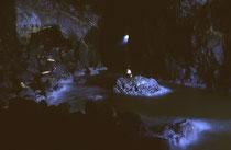 Berühmt sind die ca. 0,81 ha grossen und bis 38 m hohen Höhlen im Inneren der Felsen, mit stetem Zugang zum offenen Meer. Sie wurden 1880 entdeckt und im Jahre 1932 für Publikum geöffnet. Heute sind diese Ruheorte für die Robben mit einem Lift zugänglich.