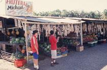 Verkaufststände an der Strasse zur Carara Biological Reserve.
