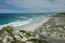 Abstieg zur Seal Bay, wo sich eine Kolonie von Australischen Seelöwen (Neophoca cinerea) befindet. Man darf diesen Strand nur als Gruppe und mit einem Führer betreten. Dazu müssen weitere Vorsichtregeln eingehalten werden, um die Tiere nicht zu stören.