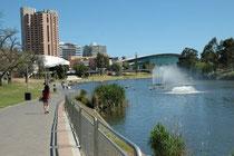 Das Convention Centre in Adelaide (Ort der Tagung der WAZA, 2008) mit dem River Torrens. Bereits hier haben wir zahlreiche interessante Vogelarten sehen können.