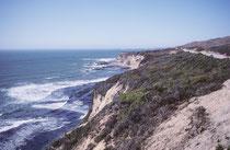 Kurz hinter Santa Barbara verläuft der Highway 1 wieder nahe der Küste. Nördlich von Morro Bay beginnt der landschaftlich schönste Abschnitt. Bis nach Monterey führt die Strasse der Steilküste von Big Sur entlang.