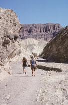 Wanderungen in den heissen Felstälern sind nich ohne Risiko. Reichlich Wasser – mehrere Liter pro Person und Tag – sind überlebenswichtig! (Weitere Bilder zum Death Valley NP finden sich in den Gallerien USA II und USA III).