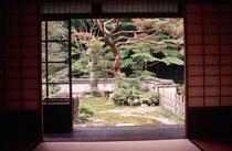 Ausblick in den Garten des Hauses der ehemaligen Samuraifamilie in der Nähe von Shimonoseki