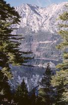 Weihnachten und Neujahr 1963/64 verbrachte ich teilweise auf den Skiern. Hier in Stateline/South Lake Tahoe, einem durch die Staatsgrenze zwischen Kalifornien (Gambling nicht gestattet) und Nevada (Gambling gestattet !) mitten durch geteilten Ski-Resort.