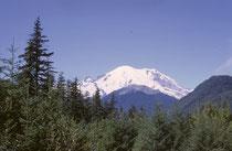 Der 953 km2 umfassende Mount-Rainier-Nationalpark wurde am 2. März 1899 gegründet Sein Wahrzeichen ist der 4392 m hohe Mount Rainier, der höchste Berg der Kaskadenkette, mit vulkanischem Ursprung. Seine alpine Fauna (und Flora) macht den Berg einmalig.