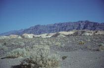 """1849 gerieten zwei Gruppen von Reisenden in das Tal. Lange fanden sie keinen Ausweg und, waren gezwungen ihre Ochsen zu verspeisen Als es ihnen schliesslich gelang, das Tal zu verlassen, rief eine der Frauen dem Tal ein """"Goodbye, Death Valley"""" hinterher."""