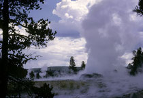 """Hier dürfte es sich weniger um einen Geysir als um eine """"Fumarole"""", also eine Dampfaustrittsstelle handeln. Davon gibt es im Park genug. Überall dampft, blubbert und spritzt es aus der Erde."""