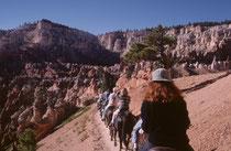 """Im Jahre 1982 (s. Galerie USA III) hatten wir den Abstieg in den Bryce Canyon zu Fuss unternommen. Mit unserer abenteuerlustigen Tochter Sarah buchten wir 1999 eine Tour zu Pferd hinunter ins Gewirr der dort bis 45 m hohen """"Hoodoos""""."""