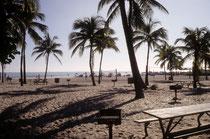 Im Jahre 1994 (CITES CoP in Fort Lauderdale) besuchten wir am freien Wochenende u.a. den Key Biscayne National Park und den Everglades National Park in Florida. Einige Bilder seien hier angehängt. So ging es denn vom Sandstrand in Fort Lauderdale…