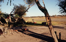 In Maun übernachteten wir im Camp des Tour Organisators (Drifters). Im ausgetrockneten Flussbett im Hintergrund floss kurz vor unserer Ankunft ein breiter Strom, der Thamalakane River (er wird später zum Boteti River, dem Zufluss zur Makgadikgadi-Pfanne)
