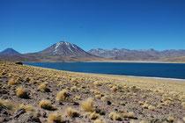 Im Hintergrund der 5622 m hohe Cerro Miscanti