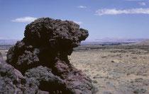 """Das Lava Beds National Monument, N-Kalifornien. Die wiederholten Ausbrüche des Medicine-Lake-Vulkans in den letzten 2 Millionen Jahren haben die Landschaft geprägt. Im National Monument liegen rund 30 Lavaströme (auffallend grosse Dichte an """"Lavaröhren"""")."""