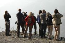 In der Umgebung von Pangot gibt es ca. 500 Vogelarten. Einige davon haben wir beobachten können, wie hier auf einem Bergsträsschen. Vom Strassenrand ging es hinunter ins Bodenlose. Also nichts für Leute mit Höhenangst (wie mich…)