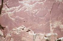 Man entdeckt sowohl detaillierte, menschenähnliche, Gestalten, wie auch Tiere, z.B. Dickhornschafe, Hirsche, Hunde, Vögel, Schlangen und Echsen. Die Bedeutung dieser Felszeichnungen (religiös, jagdtaktisch, Information vermittelnd) ist unklar.