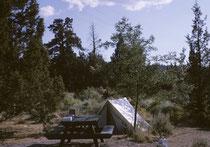 Unser Nachtlager unweit des pazifischen Ozeans. Auf den Campgrounds in den USA gehört zu jedem grosszügig ausgemessenen, eigentlichen, abgegrenzten Zeltplatz ein Parkplatz fürs Auto, eine Feuerstelle mit Grill und ein solider Tisch mit Sitzgelegenheit.