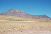 Wir wagten dann die Fahrt von der Ebene ins Gebirge zu den beiden Seen Laguna Miscanti und Laguna Miniques. Auf der Fahrt hatten wir immer die zwei markanten Gipfel des  Cerro Miscanti und des Vulkans Miñiques (hier links) vor uns am Horizont.