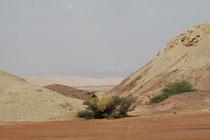 Landschaft im Wadi Araba südlich des Toten Meeres.