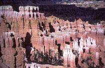 """Die Paiute-Indianer nennen die """"Hoodoos"""" """"Anka-ku-wass-a-wits"""", was so viel heisst, wie """"rot angemalte Gesichter"""". Sie erreichen eine Höhe von Maximal 45 m, und wirken deshalb von unten gesehen, nicht bedrohlich, sondern eher """"überschaubar""""."""
