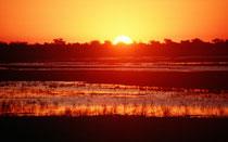 Sonnenuntergang am Chobe Fluss.