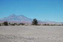Auf der Fahrt von San Pedro de Atacama zur Salar de Atacama kamen wir an diesem kleinen Ort vorbei. Wie eine Oase in einer Nordafrikanische Wüste bildeten die grünen Pflanzen eine Insel inmitten unwirtlicher Wüstenlandschaft.