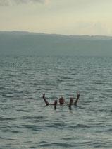 Der Salzgehalt des Toten Meeres liegt bei rund 30% (Mittelmeer: 3,8 %). Deshalb trägt das Wasser den menschlichen Körper ausserordentlich gut. In der Tat blieb auch ich, wie ein Korken an der Oberfläche, ohne irgend eine Schwimmbewegung zu machen.