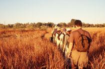 Bei der Rückkehr von unseren Exkursionen gegen Abend, bewegten wir uns zwischen den Inseln in einem Meer von goldenem Gras. Huftiere sahen wir selten. Sie haben offenbar gegenüber Menschen zu Fuss eine relativ grosse Fluchtdistanz (kein Nationalpark !).
