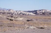 Zur Jahrhundertwende fand man im Gebiet des Death Valley das Mineral Borax. Die Borax Company baute damals die Straßen, auf denen die legendären aus 20 Maultieren bestehenden Teams bis zu 40 Tonnen schwere Wagenladungen zogen.