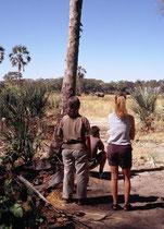 Auch bei Tag sahen wir Elefanten in der Nähe unseres Camps. Ein beeindruckender Anblick. Man hofft natürlich, dass es ihnen nicht in den Sinn kommt, ins Camp selbst einzudringen und ist deshalb trotz allem erleichtert, wenn sie weiterziehen.