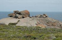 """Die """"Remarkable Rocks"""" auf Kangaroo Island gelten als das vierte Wahrzeichen Australiens. Die bizarren Formen dieser gigantischen Granitfelsen sind das Ergenbnis 500 Millionen Jahre langer Erosion durch Regen, Wind, Sand und Meergischt."""