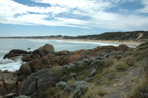 Der Cape Conran Coastal Park (in Ost-Victoria) umfasst 11'700 ha Küstenwildnis. Vor 14 Jahren wurde dort ein Versuchsprogramm zum Schutz und Montoring der Tier- und Pflanzenwelt mit erstaunlichen Ergebnissen gestartet.