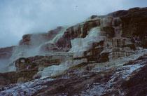 Bei unserem Aufenthalt in Mammoth Hot Springs wurden wir von einem frühen Wintereinbruch überrascht. Die sonst so farbigen Sinterterrassen (vgl. Galerie USA I) wirkten farblos und düster und auch der Himmel blieb grau und dunkel.