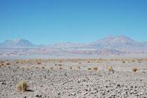 Auf der Fahrt von der Salar de Atacama nach der kleinen Stadt Socaire, hatten wir immer wieder die Vulkane vor uns, die als Ausläufer der Anden die Salzebene begrenzen. Einige dieser Vulkane sind immer noch aktiv.
