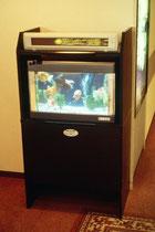 Virtuelles Aquarium in der Hotellobby. Es gibt keine lebenden Fische. Nur einen Bildschirm.