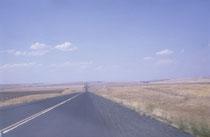 """Im Tagebuch von dieser Reise steht: """"Raus in das endlos flache Becken des Columbia, raus in die Kornkammer der USA. Hellgelb liegt die Landschaft unter dem blauen Himmel"""". Und so fuhren wir lange Zeit über eine endlos schnurgrade Strasse bis zum Horizont."""